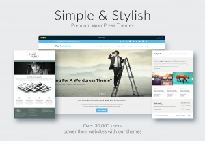 stylish-professional-wordpress-themes